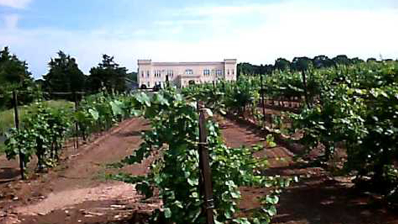 picture of winery at Sand Castle with white house in the background
