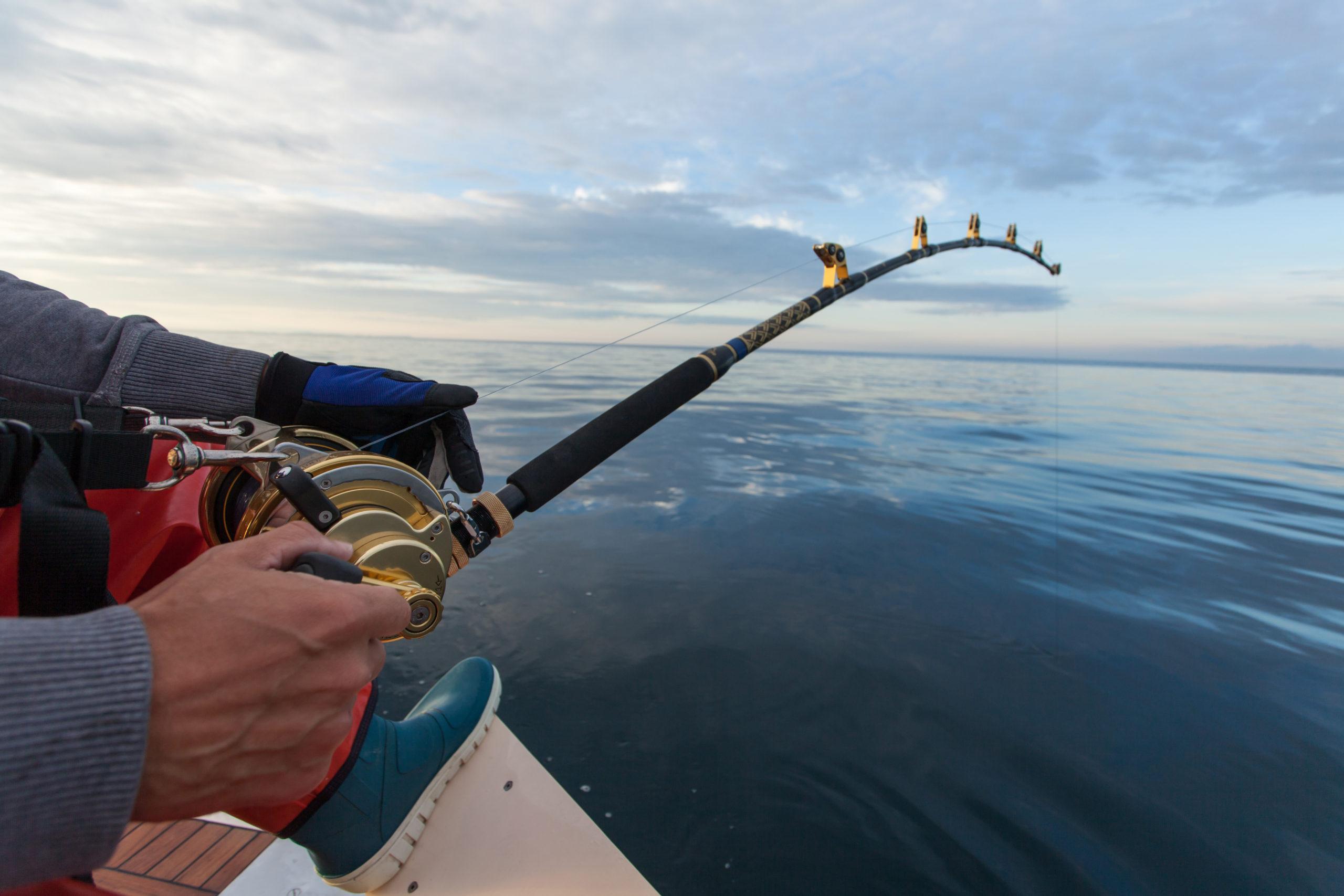 man fishing on a big game fishing trip
